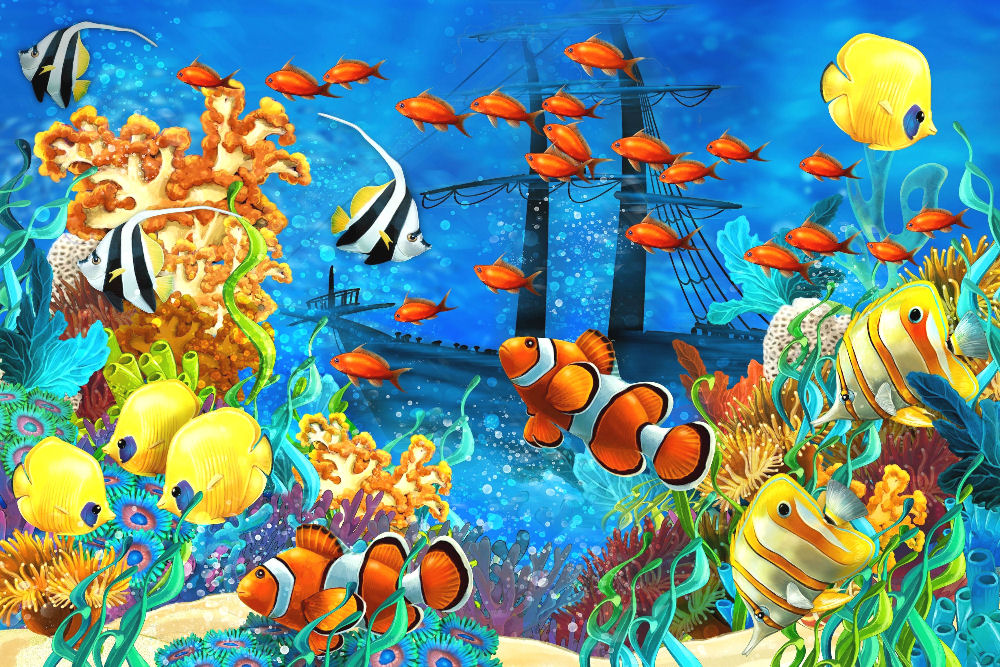 Tropical Fish Shipwreck Art Print Poster 36 X 24